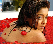 Tanushree Dutta Hot Images