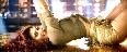 Jacqueline Fernandez and Sidharth Malhotra A Gentleman Movie Disco Disco Song Stills  1