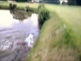 drunk golfer falls in water video