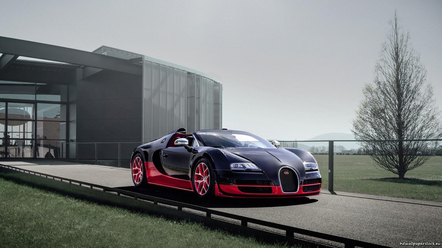 bugatti veyron grand sport cabrio black edition 2560x1440. Black Bedroom Furniture Sets. Home Design Ideas