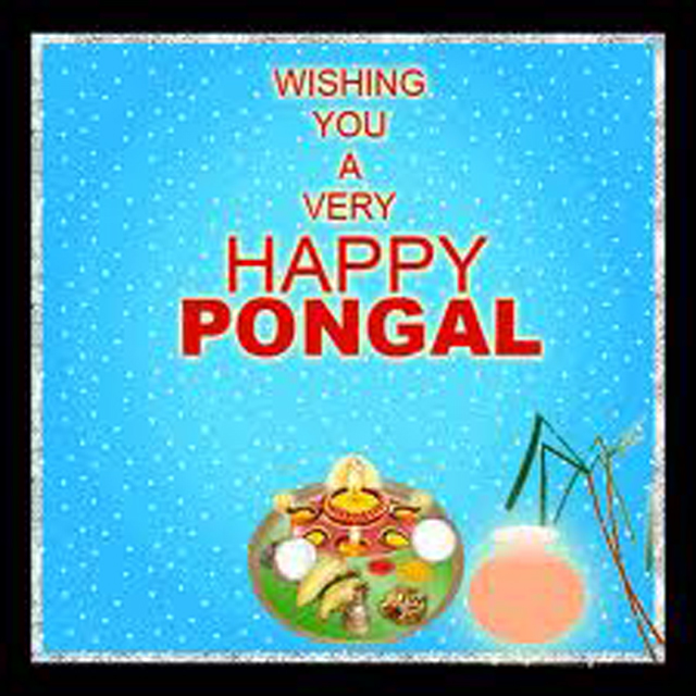 Happy Pongal Greetings : pongal on Rediff Pages