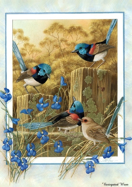 beautiful birds paintings 08