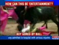 12-year-old child used in bullfight-News-Videos-The Times of India